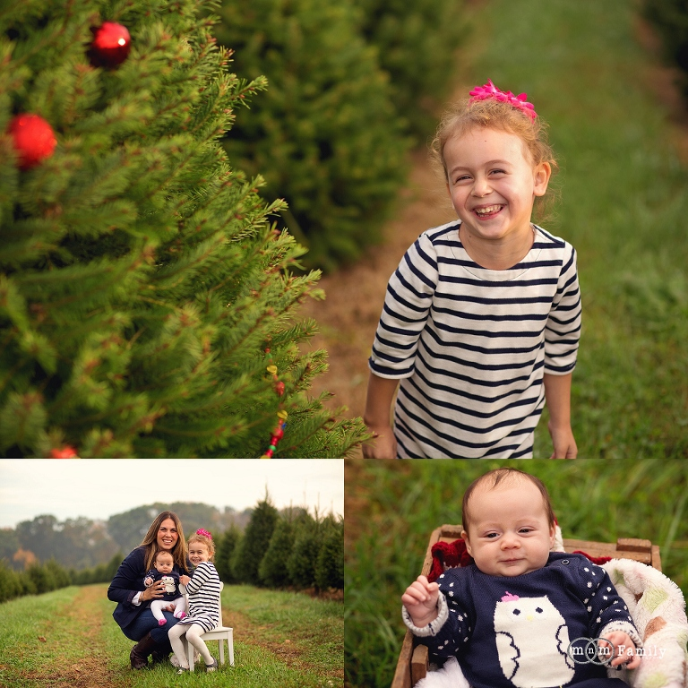 Christmas Tree Farm Photography.Christmas Tree Farm Mini Sessions Chester County Family